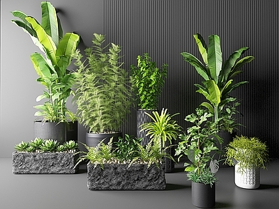 北欧绿植盆栽花草植物多肉3D模型【ID:335861864】