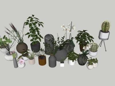 现代风格盆栽组合SU模型下载【ID:231036087】