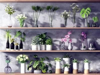 现代绿植花卉花瓶组合 现代绿植 花瓶 盆栽 花卉 花 玻璃花瓶 装饰 盆景